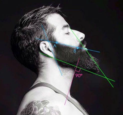 Como E Onde Delimitar A Linha Da Barba Barba Brava